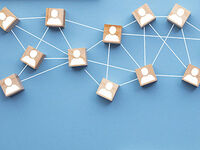 Managing Product Platforms: Delivering Variety and Realizing Synergies