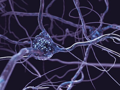 Neuroscience for Business image number null